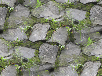 stone-wall-texture-moss