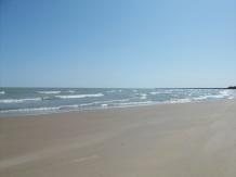 beach032610-009.jpg