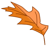 leaf_fall_wind_swept