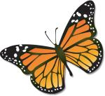 Monarch_butterfly_USGS