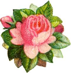 flower-square-3