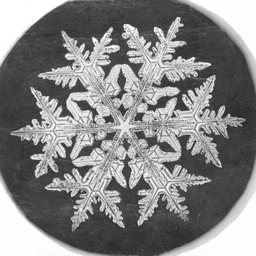 snowflake_by_Bentley_1890