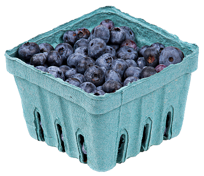 blueberries_in_pack_small