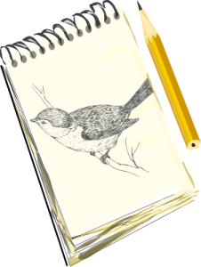 sketchpad_with_bird