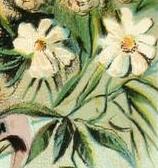 daisies-03