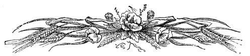 flower-borders-12