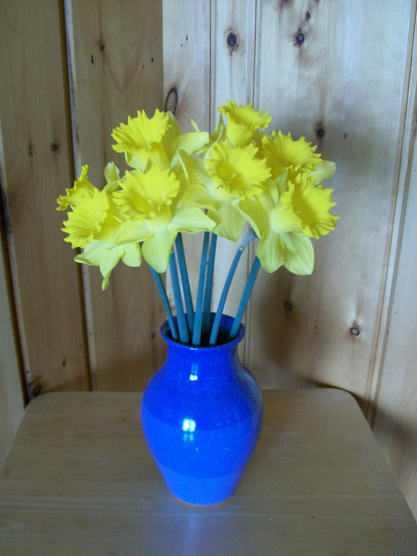 daffodilscorner