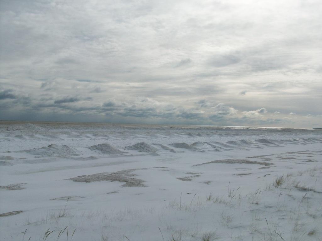 Feb-2-2011 009