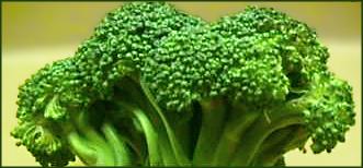 broccoli_banner