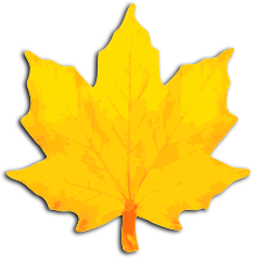 maple_leaf_fall_yellow
