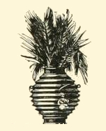 plants-05